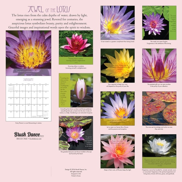 Jewel of the Lotus Mini Wall Calendar, More Flowers by Brush Dance