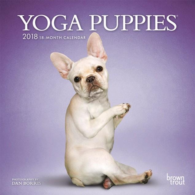 Yoga Puppies Mini Wall Calendar, Cute Puppies by Calendars