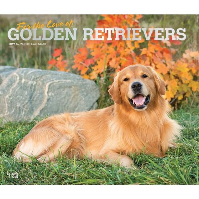 Golden Retrievers Wall Calendar, Golden Retriever by Calendars