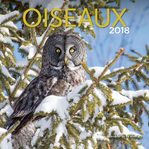 Oiseaux Wall Calendar, Birds by Calendars