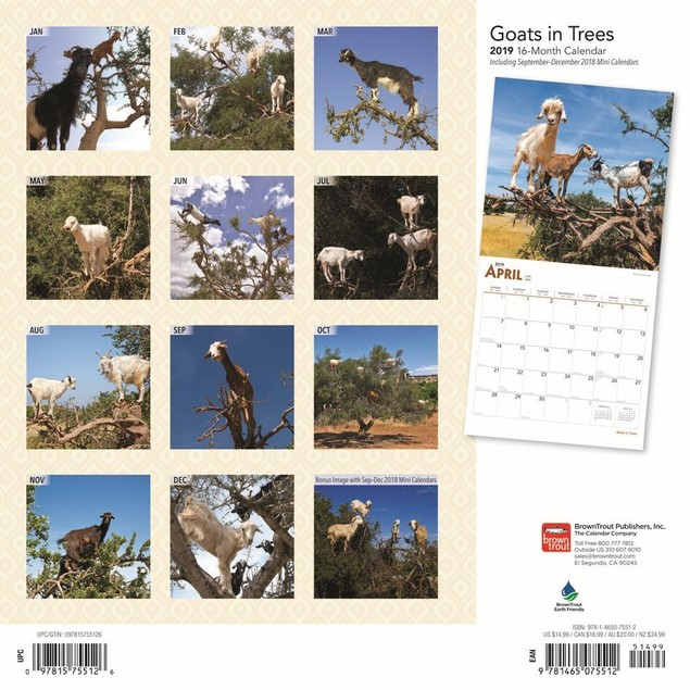 Goats in Trees Wall Calendar, Farm Animals by Calendars