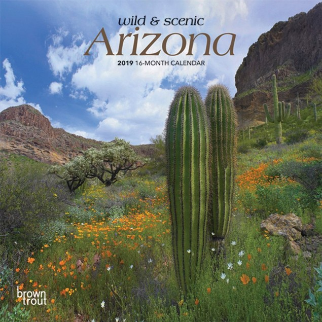Arizona Mini Wall Calendar, Arizona by BrownTrout