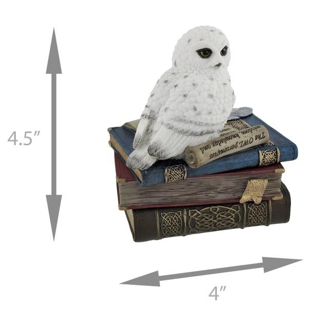 Wise Snow Owl Resting On Scholar`S Books Trinket Decorative Boxes
