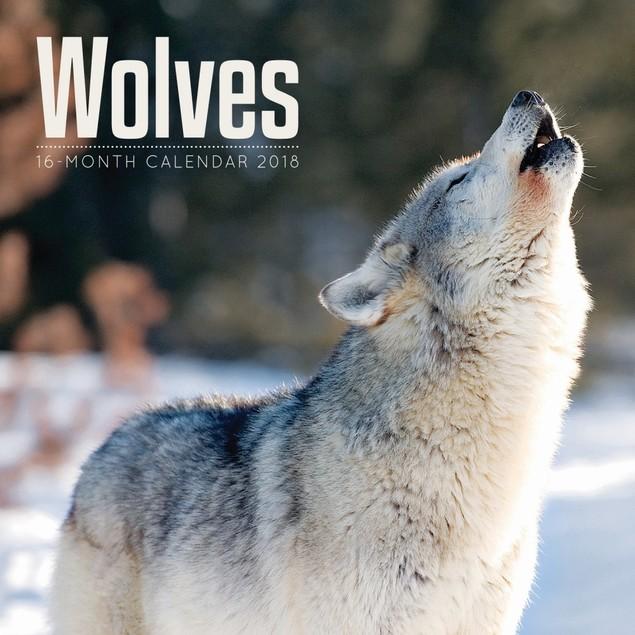 Wolves Wall Calendar, Wolves by Vista Stationery & Print Ltd
