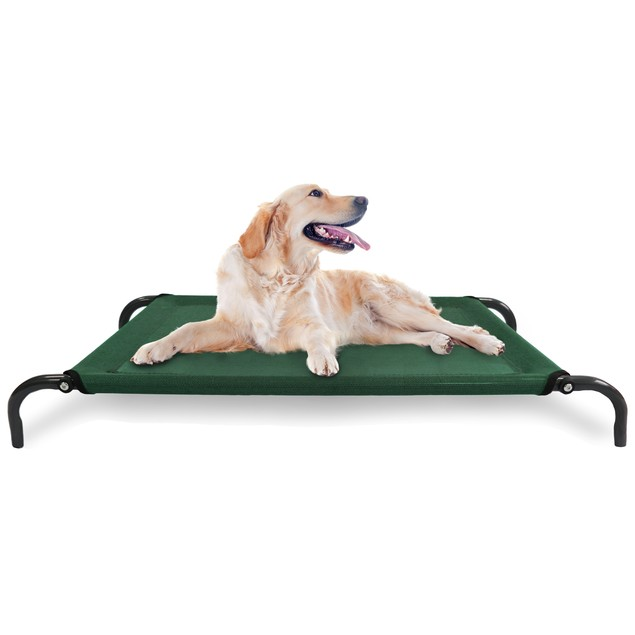 Elevated Steel Frame Pet Cot Bed