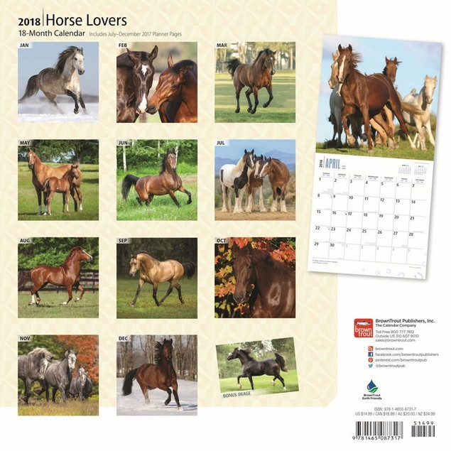 Horse Lovers Wall Calendar, Horses by BrownTrout