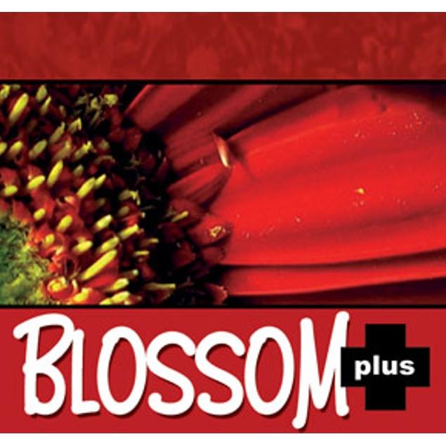 NUTRI+ BLOSSOM+ BLOOM ACTIVATOR  0-39-25 20g