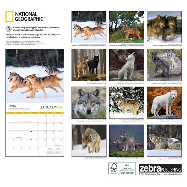 Wolves NG Wall Calendar, Wolves by Calendars