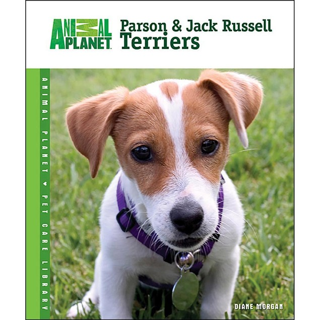 Animal Planet Parson and Jack Russell Terriers Book, Jack Russell Terrier b