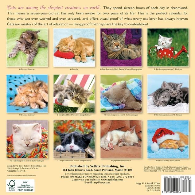 Cat Naps Mini Wall Calendar, Assorted Cats by Calendars