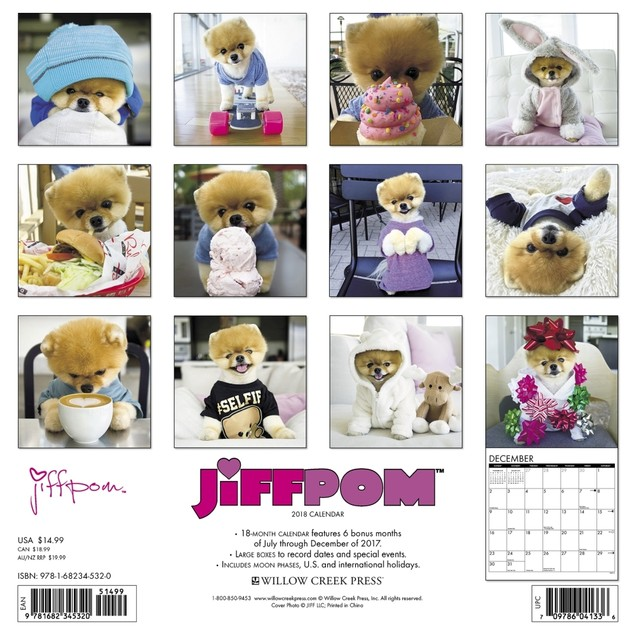 Jiff the Pomeranian Wall Calendar, Pomeranian by Calendars
