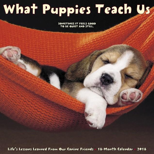 What Puppies Teach Us Wall Calendar, Cute Puppies by Calendars