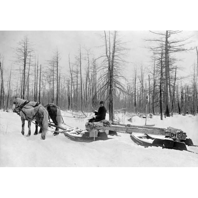 Michigan: Lumbering. /Na Lumberjack Logging With Horsedrawn Sled During The