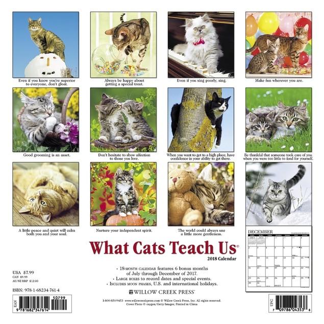 Cats What Cats Teach Us Mini Wall Calendar