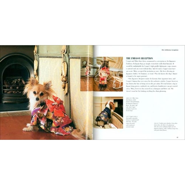 Dog Fashion Haute Couture for Your Hound Book, Funny Dogs by Cico Books