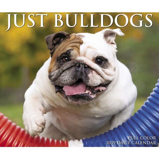 Just Bulldogs Desk Calendar, Bulldog by Calendars