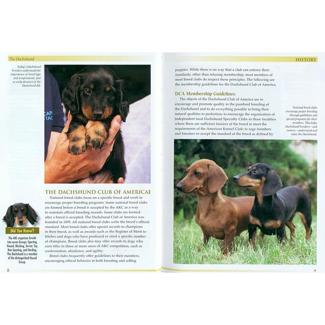 Terra Nova Dachshund Book, Dachshund by TFH Publications