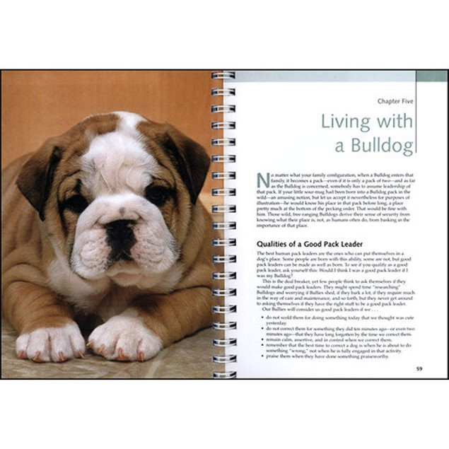 Bulldogs Barron's Dog Bible, Bulldog by Barrons Educational Series Inc
