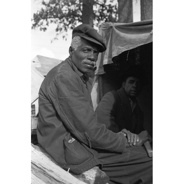 Sharecropper, 1939. /Nevicted Sharecroppers In A Roadside Camp Along Highwa