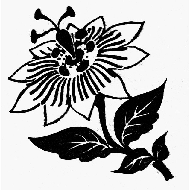 Symbol: Passion Flower. /Nsymbol Of The Passion Of Jesus Christ. Line Drawi