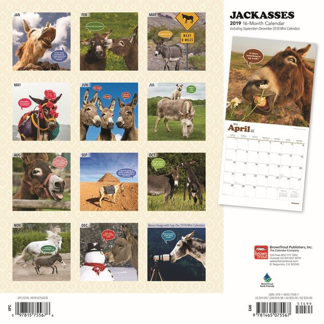 Jackasses Wall Calendar, More Animals by BrownTrout