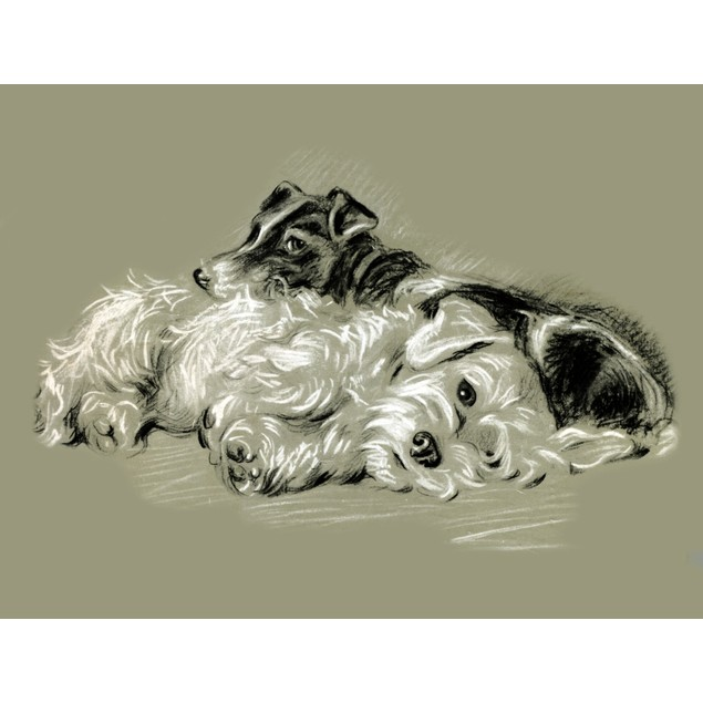 """Cover art from an illustrated book on dogs entitled """"Dogs Rough & Smooth"""" b"""
