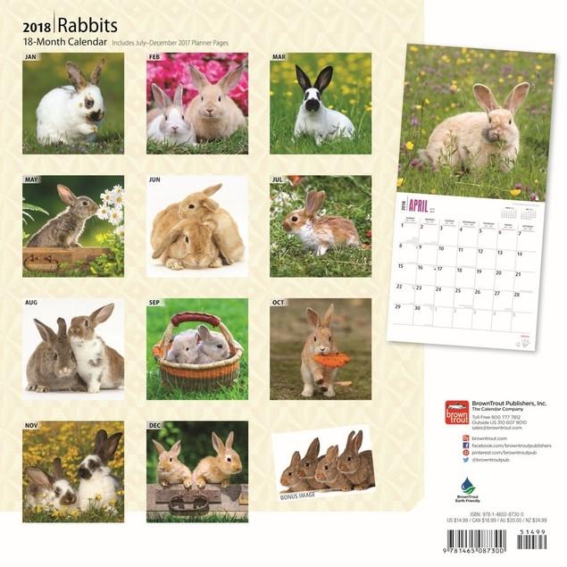 Rabbits Wall Calendar, Small Pets by Calendars