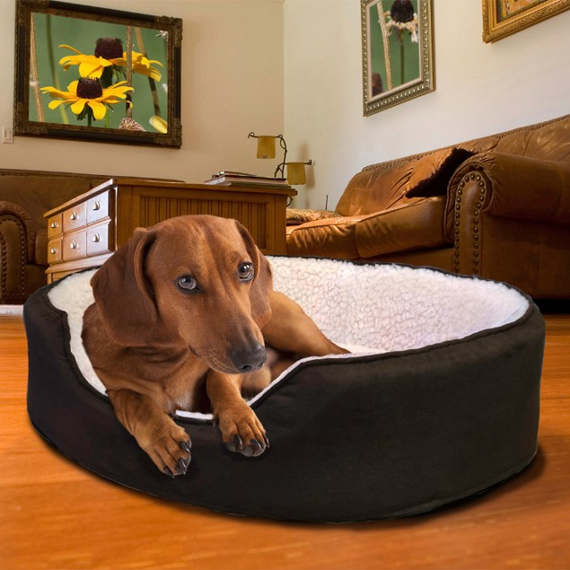 Sherpa and Suede Oval Bed