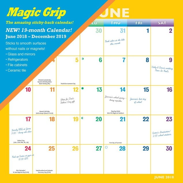 Rainbow Magic Grip Wall Calendar, Assorted Organization by Calendars