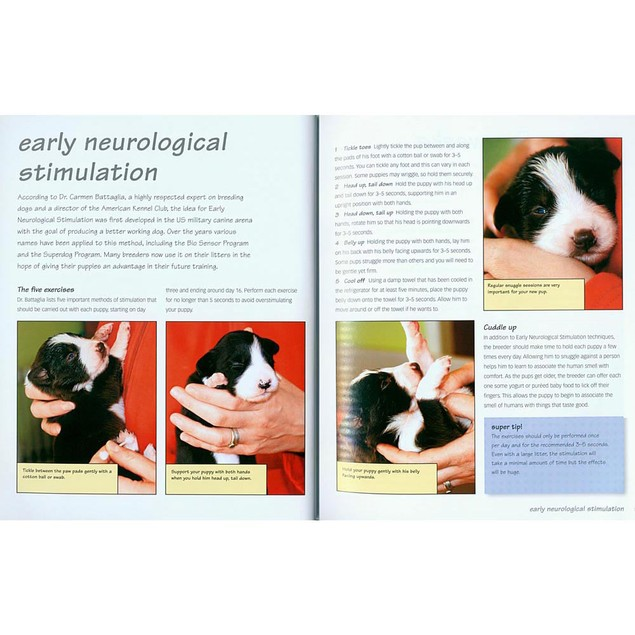 Click and Train Your Dog Book, Dog Training by TFH Publications