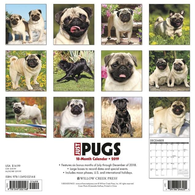 Just Pugs Wall Calendar, Pug by Calendars
