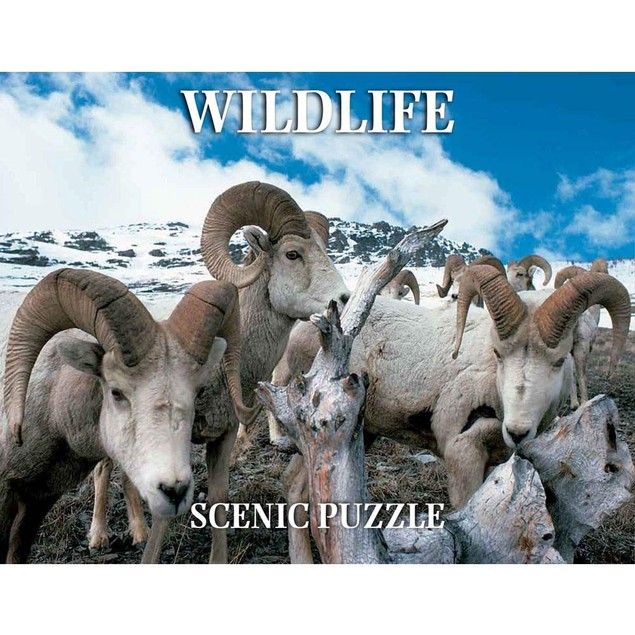 Wildlife Scenic 300 Piece Puzzle, Landscapes by Creative Arts Publishing