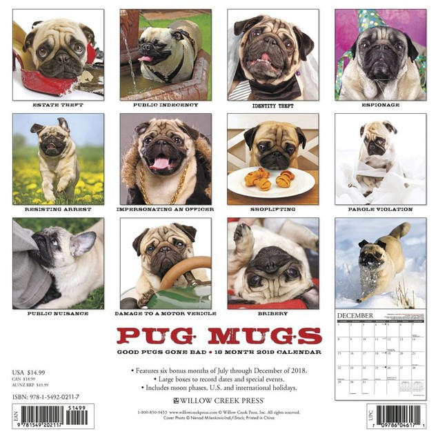 Pug Mugs Wall Calendar, Pug by Calendars