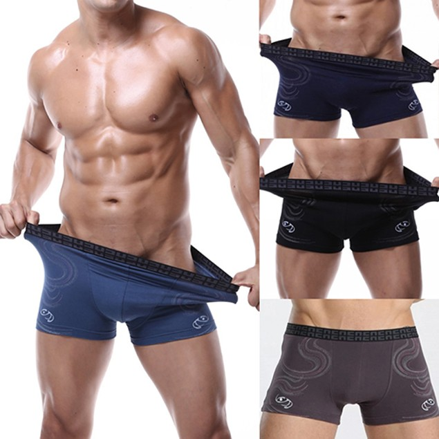 Men Sexy Bulge Pouch Boxer Elastic Briefs