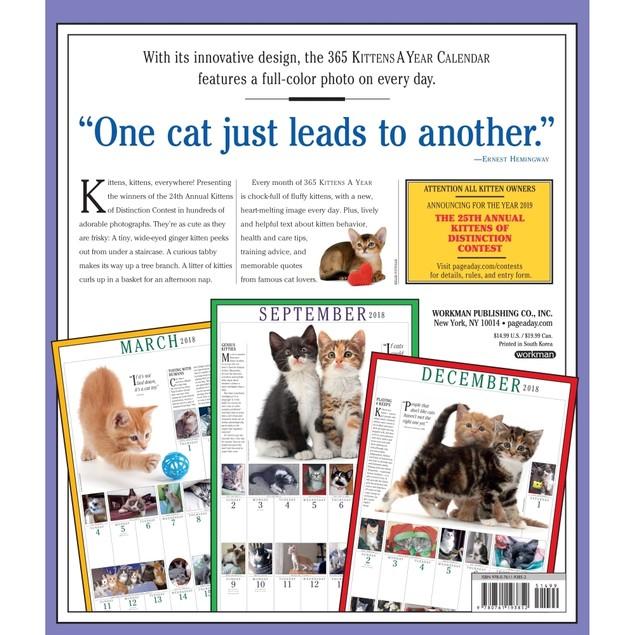 365 Days of Kittens Wall Calendar, Kittens by Calendars
