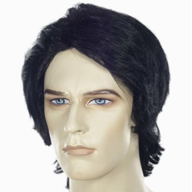 Fulton Reed or Shane Falco Black Mens Wig