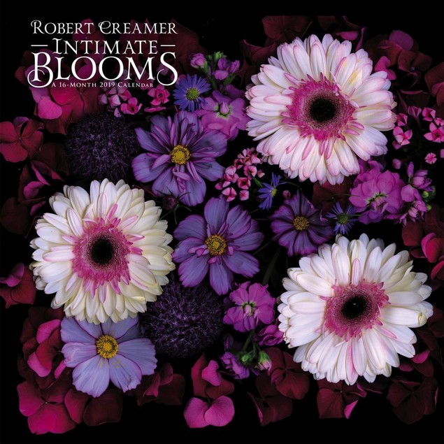 Intimate Blooms Wall Calendar, More Flowers by Calendars