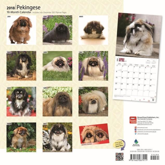 Pekingese Wall Calendar, Pekingese by Calendars