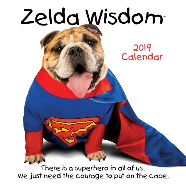 Zelda Wall Calendar, Funny Dogs by Calendars