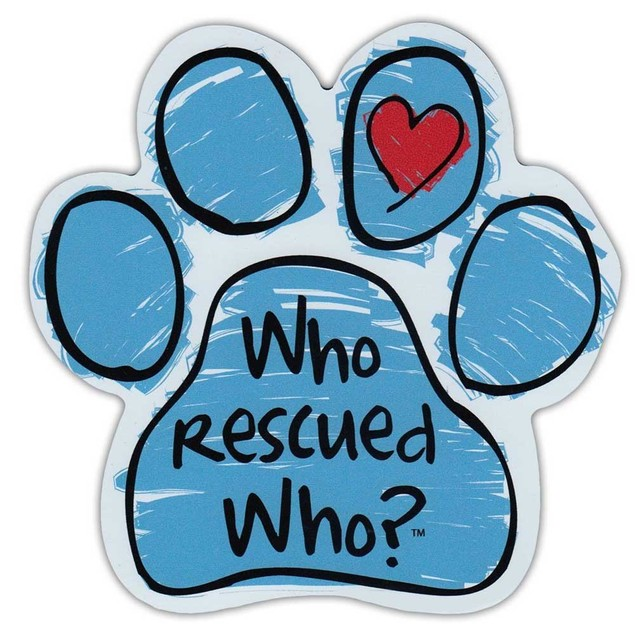 """Blue Who Rescued Who Paw Magnet Dog Cat 5.5"""" x 5.5"""" Shaped Pet Puppy Kitten"""