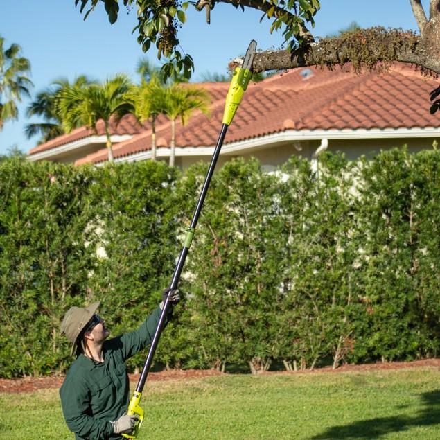 """Sun Joe 8"""" Telescoping 7-Amp Electric Pole Chain Saw"""