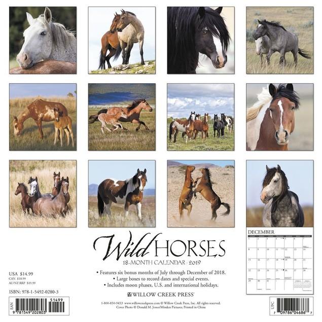 Wild Horses Wall Calendar, Horses by Calendars