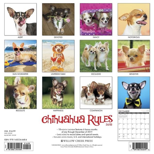 Chihuahua Rules Wall Calendar, Chihuahua by Calendars