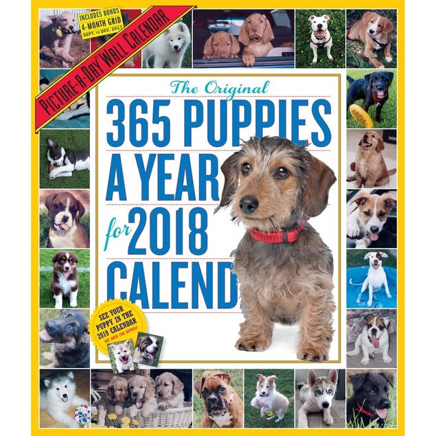 365 Days of Puppies Wall Calendar, Cute Puppies by Calendars