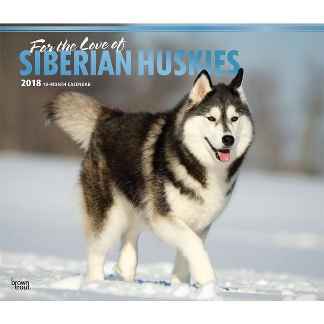 Siberian Huskies Wall Calendar, Siberian Husky by Calendars