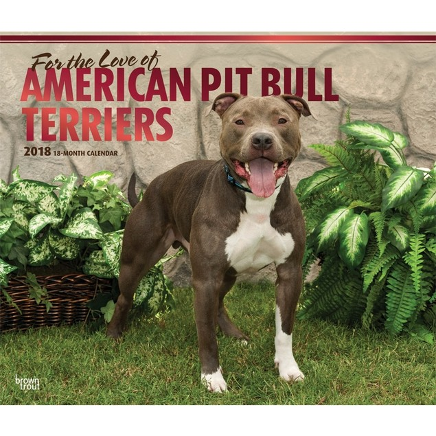 Pit Bull Terriers Wall Calendar,  by BROWNT