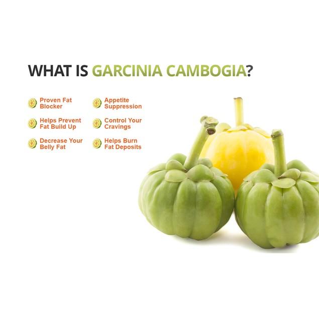 Pure Garcinia Cambogia Extract Maximum 95% HCA - 6 Bottles
