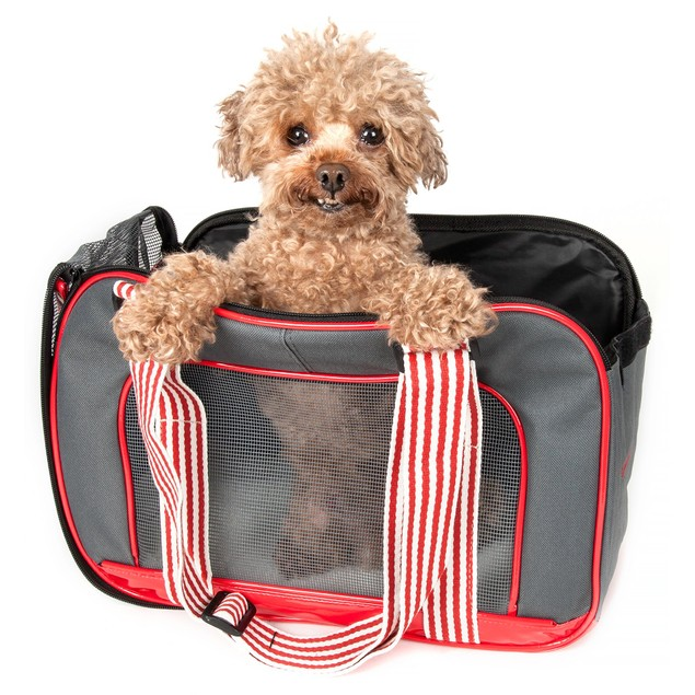 Candy Cane' Fashion Pet Carrier