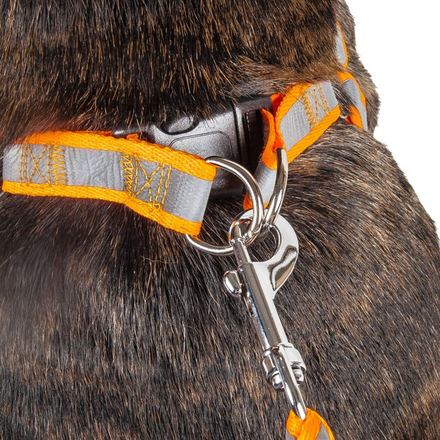 Reflective Stitched Easy Tension Adjustable 2-in-1 Dog Leash Harness