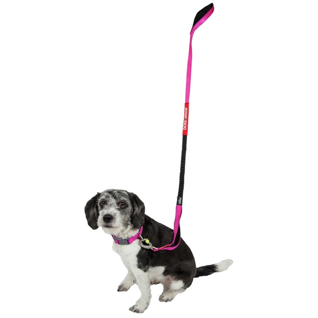 Dog Helios Easy-Tension Sporty Embroidered Durable Pet Dog Leash And Collar